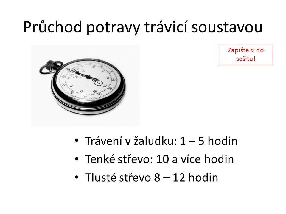 Průchod potravy trávicí soustavou Trávení v žaludku: 1 – 5 hodin Tenké střevo: 10 a více hodin Tlusté střevo 8 – 12 hodin Zapište si do sešitu!