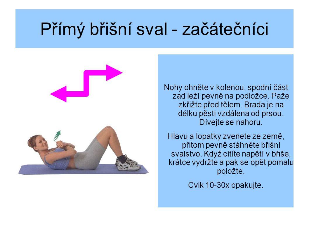 Přímý břišní sval - začátečníci Nohy ohněte v kolenou, spodní část zad leží pevně na podložce.