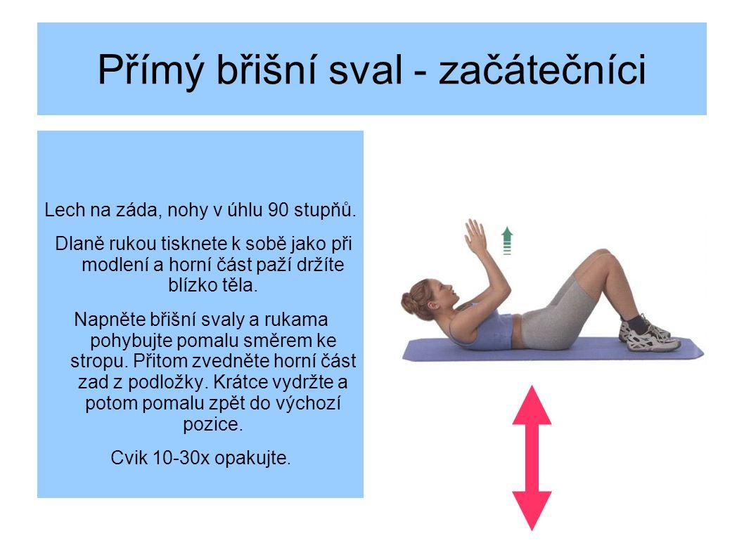 Přímý břišní sval - začátečníci Lech na záda, nohy v úhlu 90 stupňů.