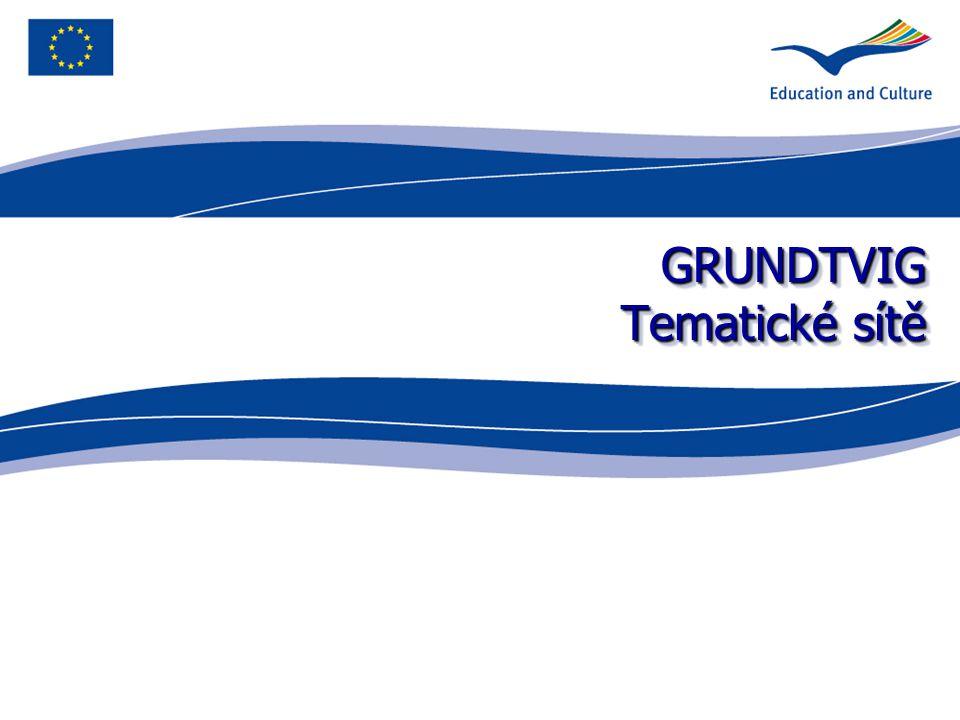 GRUNDTVIG Tematické sítě