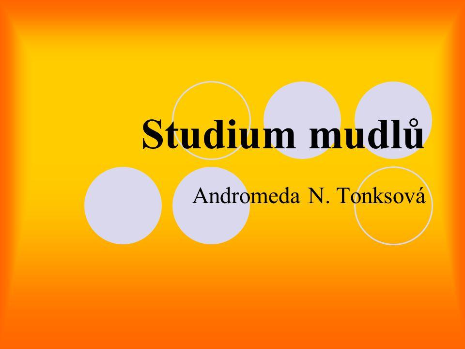 Studium mudlů Andromeda N. Tonksová