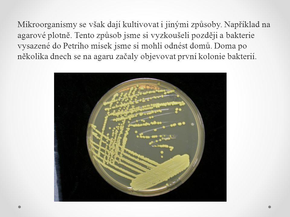 Mikroorganismy se však dají kultivovat i jinými způsoby.