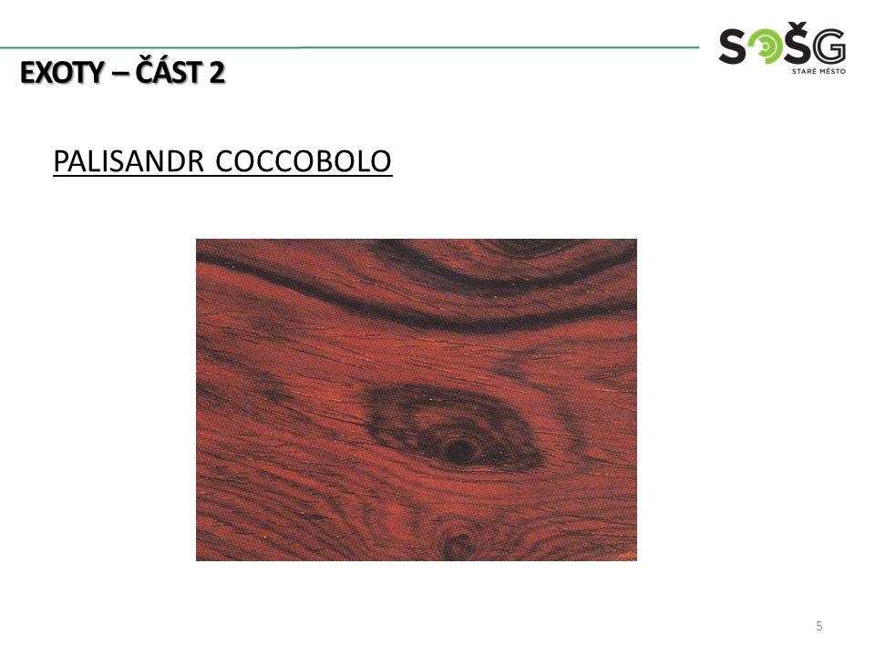 EXOTY – ČÁST 2 PALISANDR COCCOBOLO 5