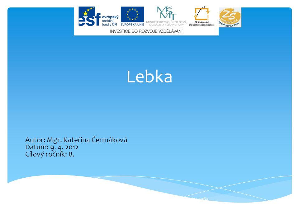 Lebka Život jako leporelo, registrační číslo CZ.1.07/1.4.00/21.3763 Autor: Mgr.