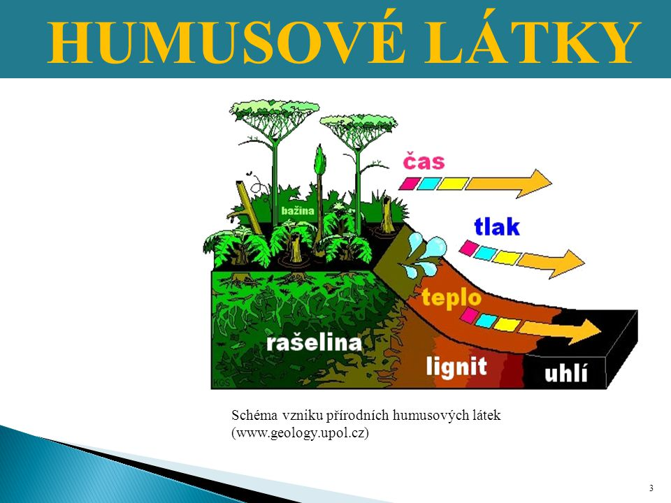 Půdní organická hmota → je největší světový terestrický zdroj uhlíku Primární organická hmota → součást půdní organické hmoty.