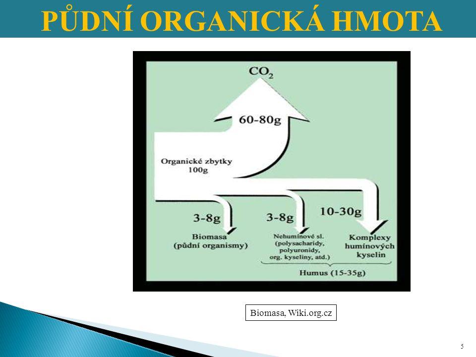 PŮDNÍ ORGANICKÁ HMOTA Humus dělíme: 1.Nespecifické HL (primární látky) 2.Specifické HL (sekundární látky) 3.Meziprodukty rozkladu 16 Kononová a Bělčiková (1963)