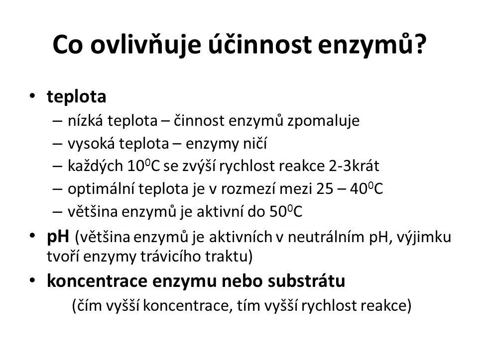 Co ovlivňuje účinnost enzymů? teplota – nízká teplota – činnost enzymů zpomaluje – vysoká teplota – enzymy ničí – každých 10 0 C se zvýší rychlost rea