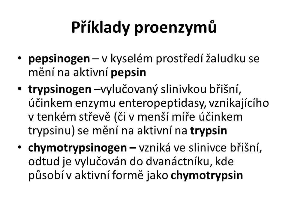 Příklady proenzymů pepsinogen – v kyselém prostředí žaludku se mění na aktivní pepsin trypsinogen –vylučovaný slinivkou břišní, účinkem enzymu enterop