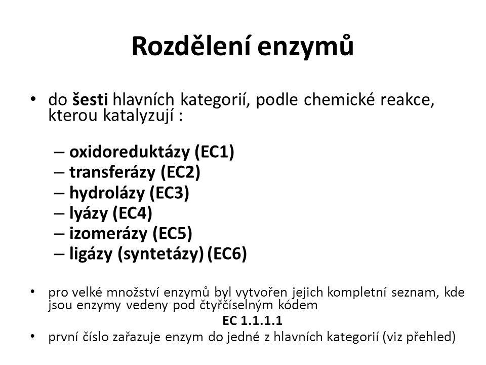 Rozdělení enzymů do šesti hlavních kategorií, podle chemické reakce, kterou katalyzují : – oxidoreduktázy (EC1) – transferázy (EC2) – hydrolázy (EC3)