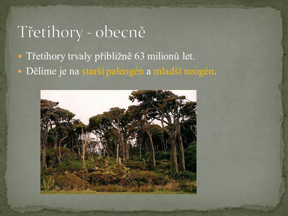 Třetihory trvaly přibližně 63 milionů let. Dělíme je na starší paleogén a mladší neogén.