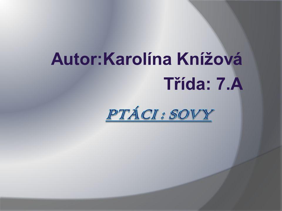 Zdroje 1. http://cs.wikipedia.org/wiki/Sovy 2.