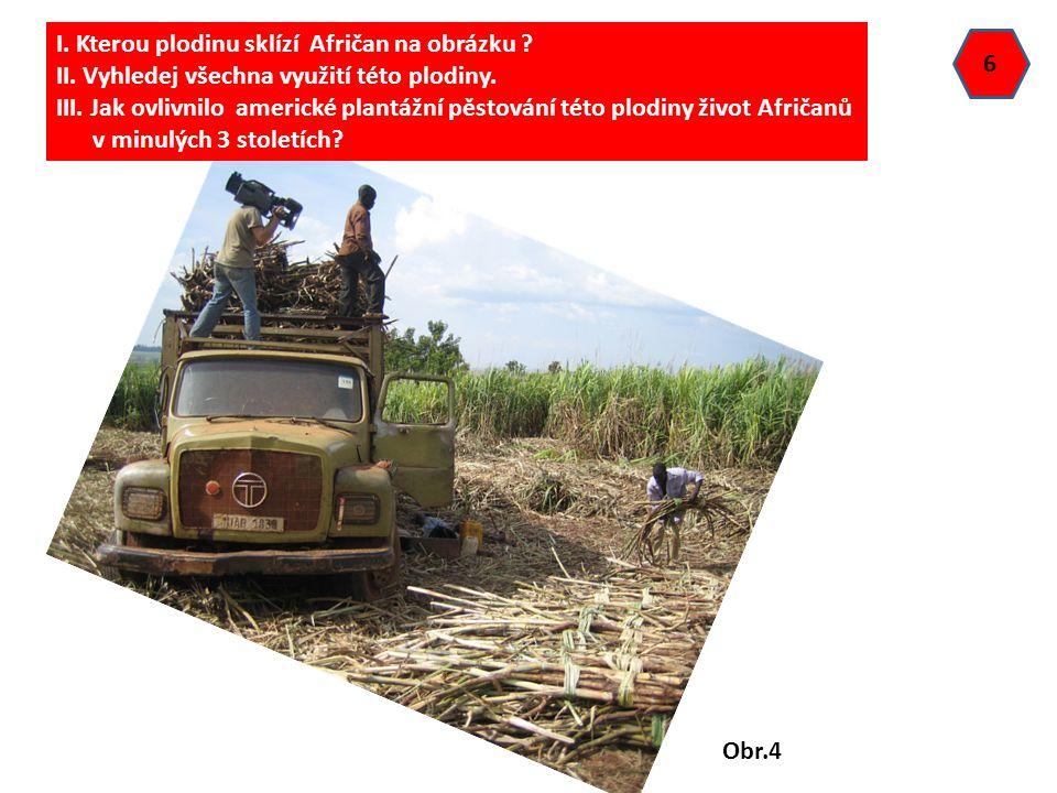 6 I. Kterou plodinu sklízí Afričan na obrázku ? II. Vyhledej všechna využití této plodiny. III. Jak ovlivnilo americké plantážní pěstování této plodin