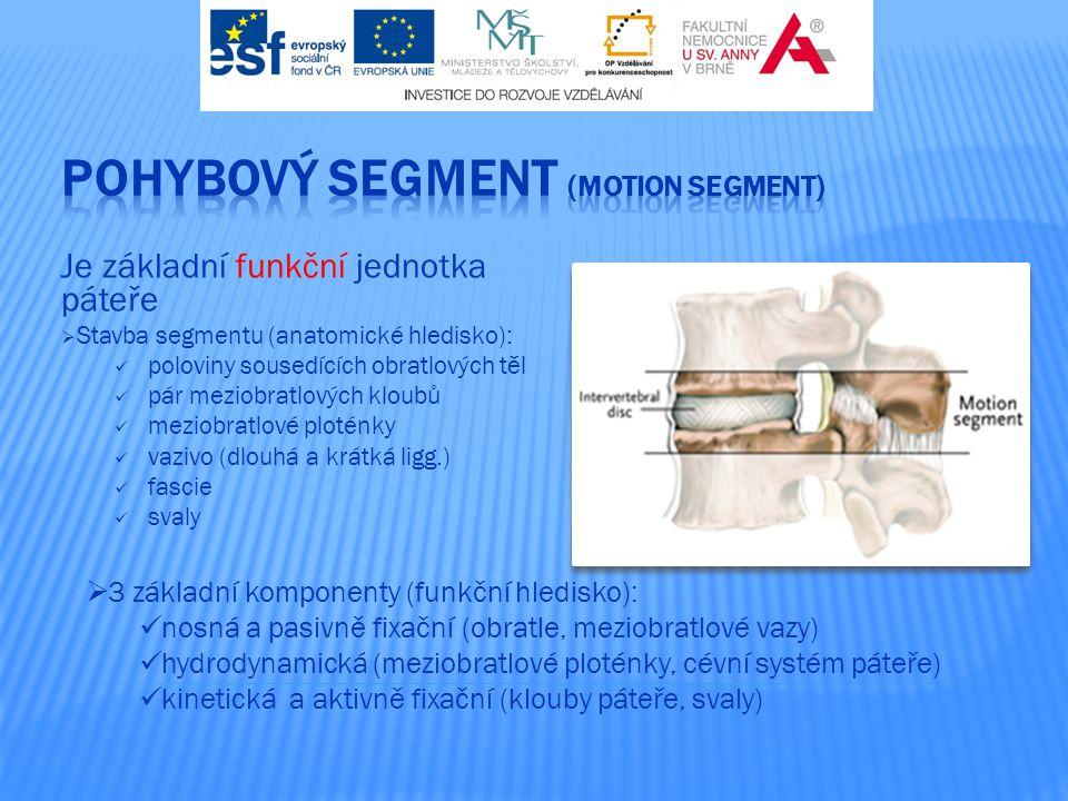 Je základní funkční jednotka páteře  Stavba segmentu (anatomické hledisko): poloviny sousedících obratlových těl pár meziobratlových kloubů meziobrat