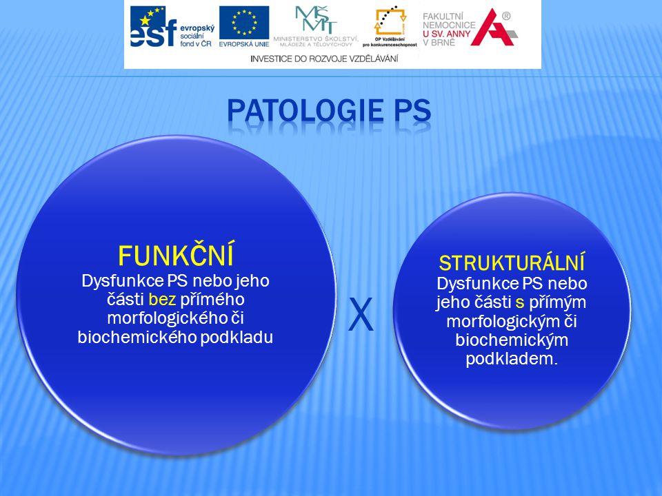 FUNKČNÍ Dysfunkce PS nebo jeho části bez přímého morfologického či biochemického podkladu STRUKTURÁLNÍ Dysfunkce PS nebo jeho části s přímým morfologi