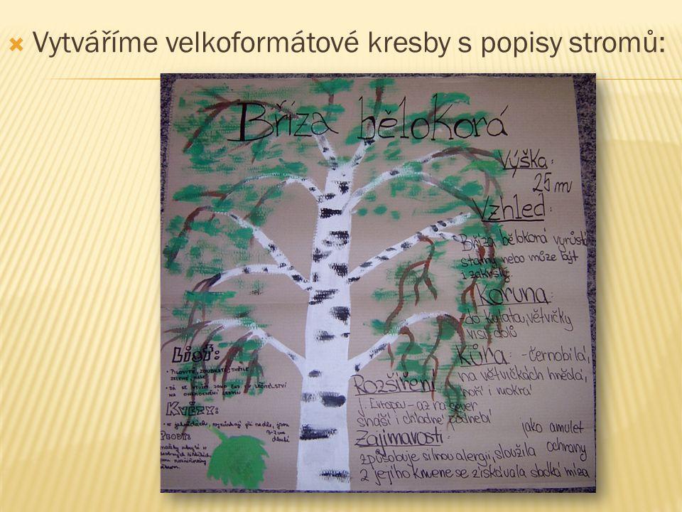  Vytváříme velkoformátové kresby s popisy stromů: