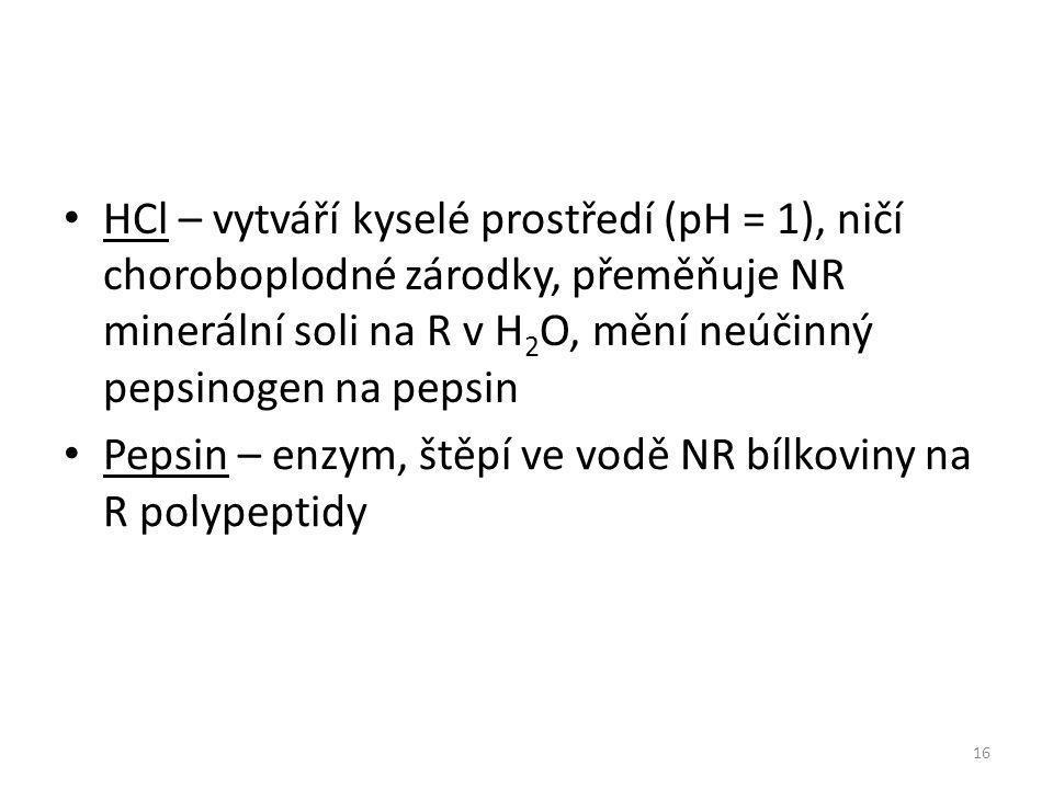 HCl – vytváří kyselé prostředí (pH = 1), ničí choroboplodné zárodky, přeměňuje NR minerální soli na R v H 2 O, mění neúčinný pepsinogen na pepsin 16 Pepsin – enzym, štěpí ve vodě NR bílkoviny na R polypeptidy