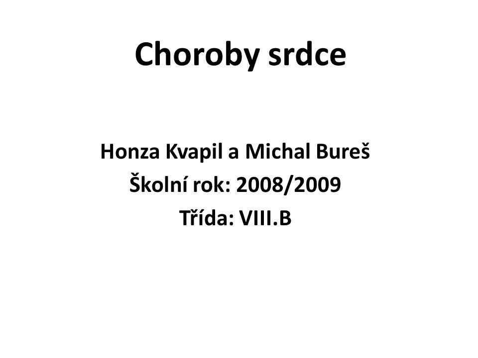 Choroby srdce Honza Kvapil a Michal Bureš Školní rok: 2008/2009 Třída: VIII.B