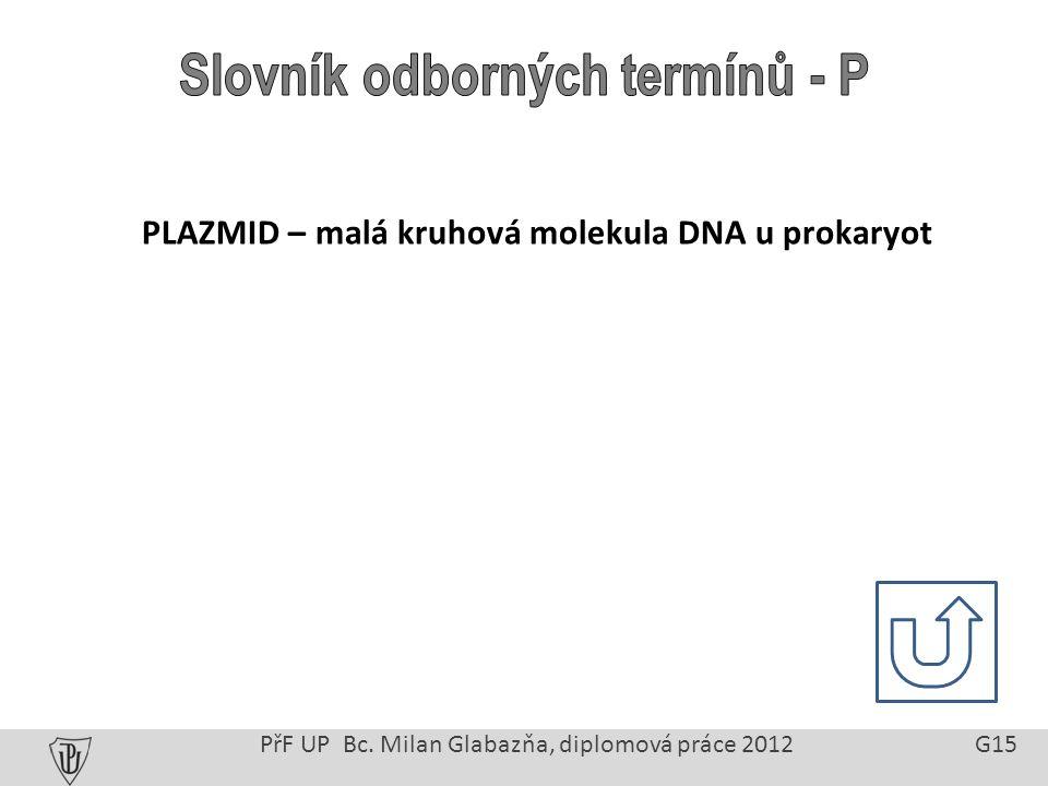 PřF UP Bc. Milan Glabazňa, diplomová práce 2012 G15 PLAZMID – malá kruhová molekula DNA u prokaryot