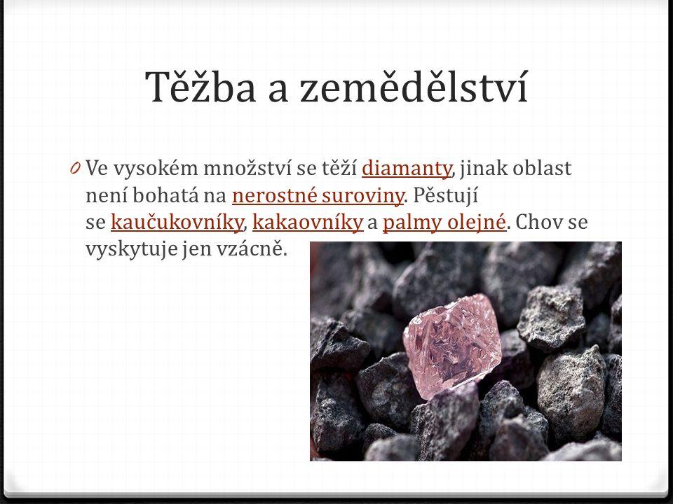 Těžba a zemědělství 0 Ve vysokém množství se těží diamanty, jinak oblast není bohatá na nerostné suroviny. Pěstují se kaučukovníky, kakaovníky a palmy