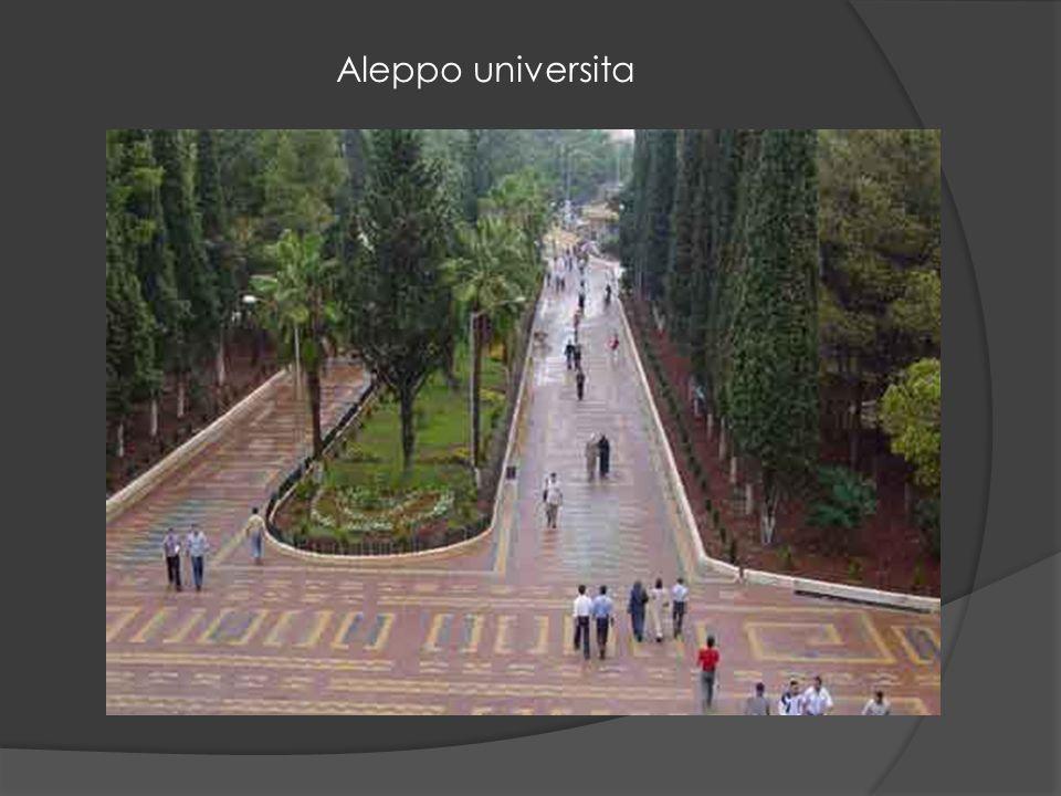 Aleppo citadela