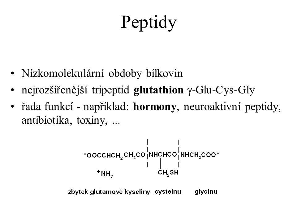 Peptidy Nízkomolekulární obdoby bílkovin nejrozšířenější tripeptid glutathion  -Glu-Cys-Gly řada funkcí - například: hormony, neuroaktivní peptidy, a