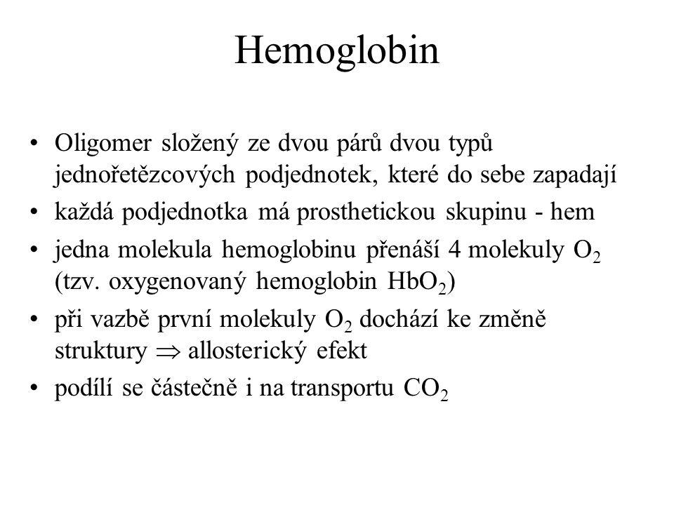 Hemoglobin Oligomer složený ze dvou párů dvou typů jednořetězcových podjednotek, které do sebe zapadají každá podjednotka má prosthetickou skupinu - h