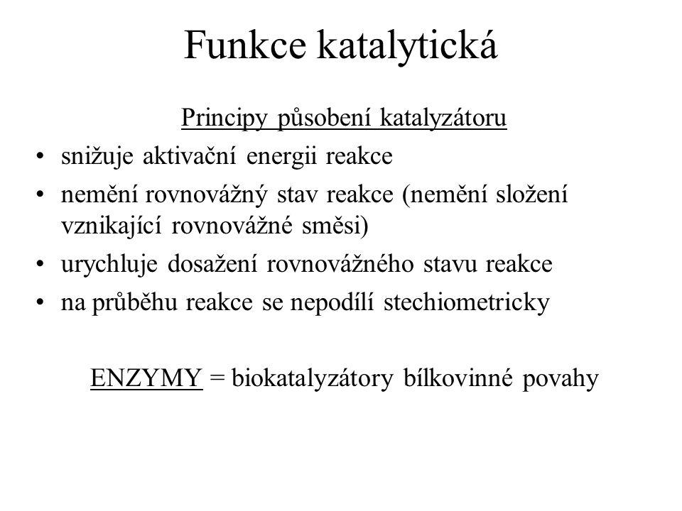 Funkce katalytická Principy působení katalyzátoru snižuje aktivační energii reakce nemění rovnovážný stav reakce (nemění složení vznikající rovnovážné