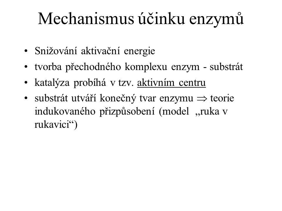 Mechanismus účinku enzymů Snižování aktivační energie tvorba přechodného komplexu enzym - substrát katalýza probíhá v tzv. aktivním centru substrát ut