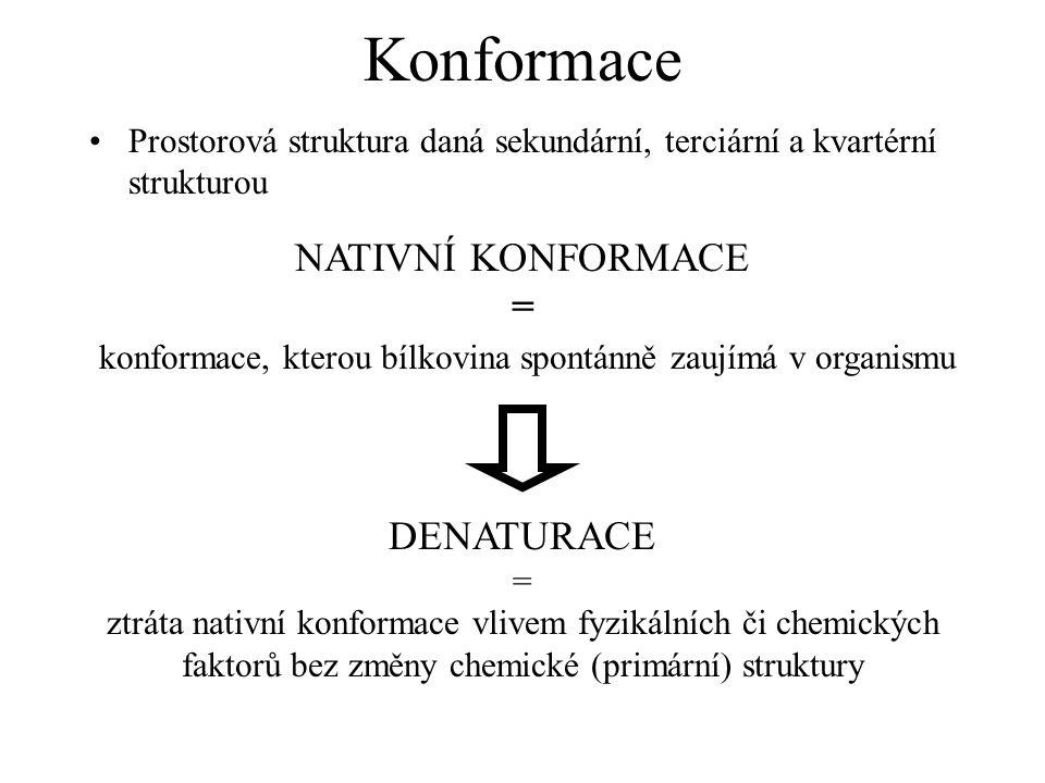 Konformace Prostorová struktura daná sekundární, terciární a kvartérní strukturou NATIVNÍ KONFORMACE = konformace, kterou bílkovina spontánně zaujímá