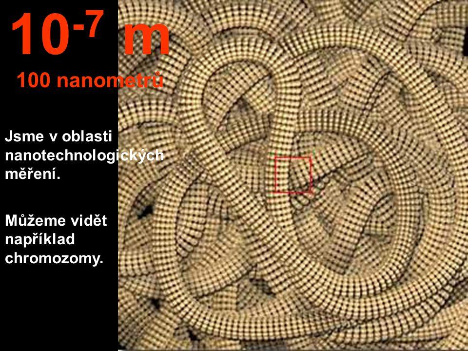Je vidět jádro buńky. 10 -6 m 1 mikrometr 1 μm