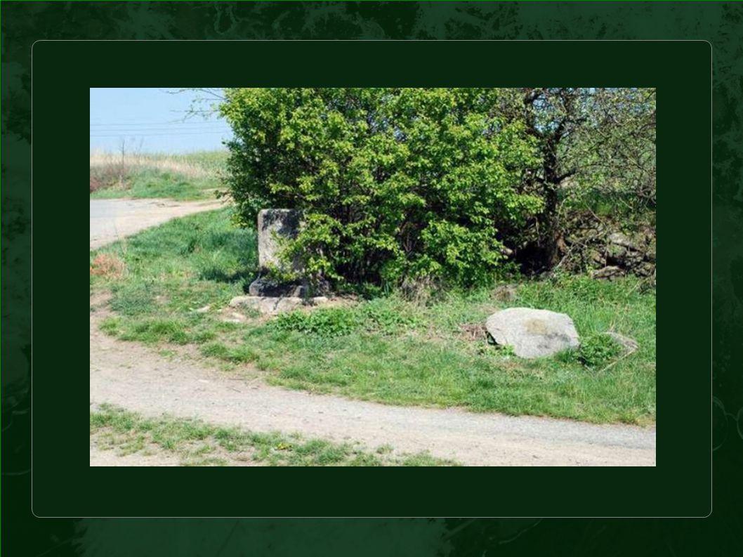 Malá brigáda stačila na to, aby se odhalilo, co zakrývalo roští - starou křivolakou jabloňku a kamennou zídku.