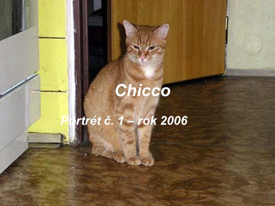 Chicco Portrét č. 1 – rok 2006