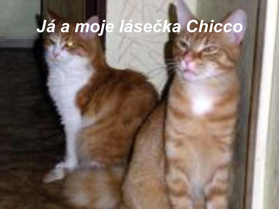 Já a moje lásečka Chicco