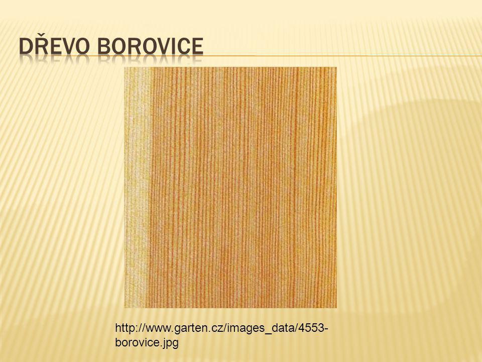http://www.garten.cz/images_data/4553- borovice.jpg