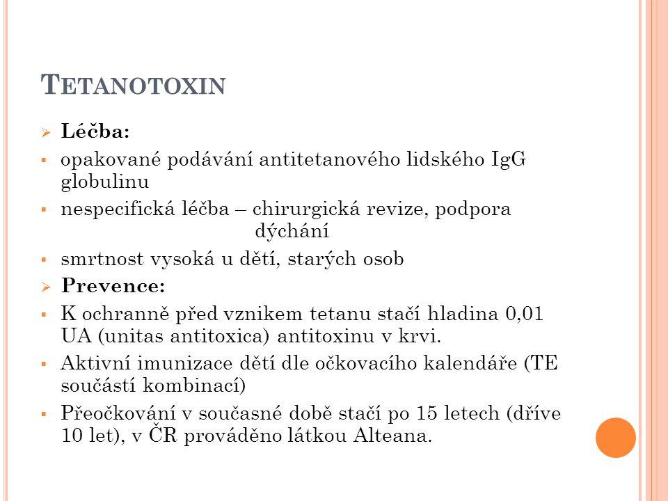  Léčba:  opakované podávání antitetanového lidského IgG globulinu  nespecifická léčba – chirurgická revize, podpora dýchání  smrtnost vysoká u dět