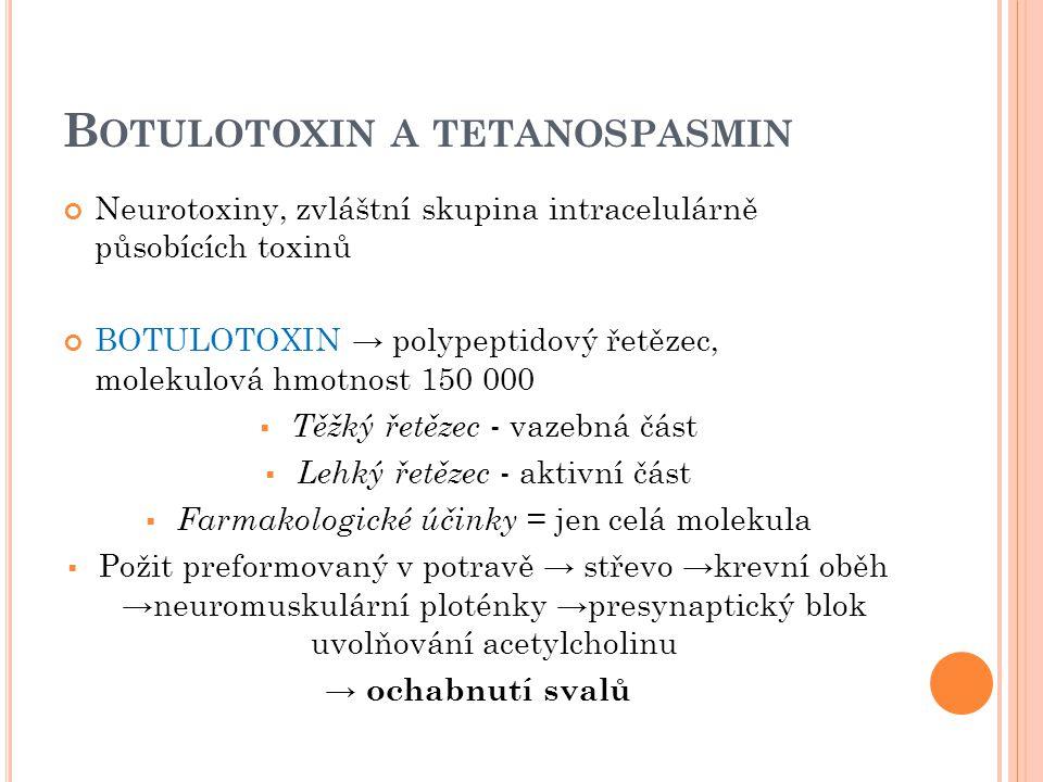 B OTULOTOXIN A TETANOSPASMIN Neurotoxiny, zvláštní skupina intracelulárně působících toxinů BOTULOTOXIN → polypeptidový řetězec, molekulová hmotnost 1