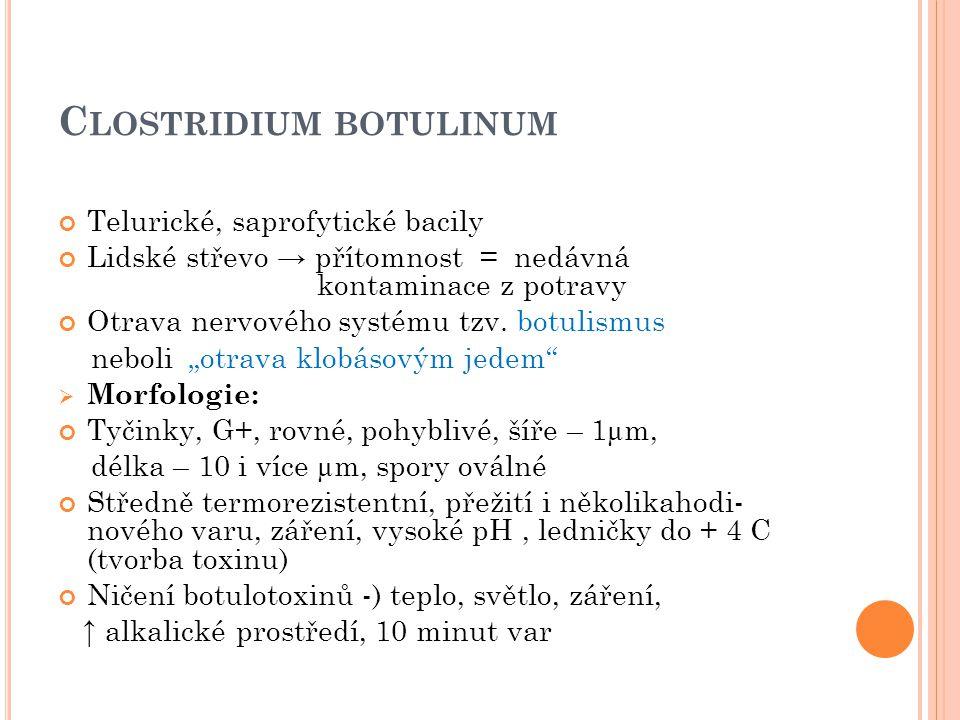 P OUŽITÁ LITERATURA 1.