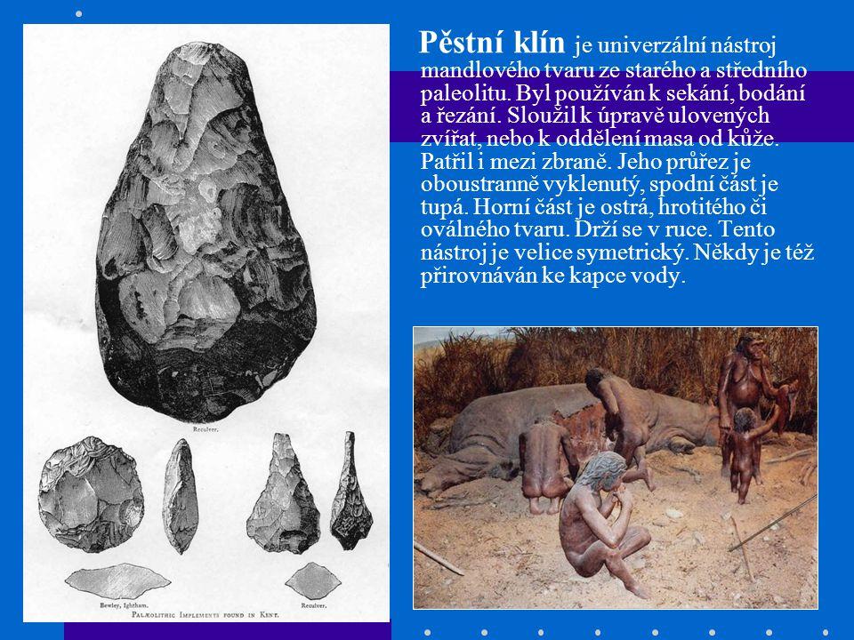 Pěstní klín je univerzální nástroj mandlového tvaru ze starého a středního paleolitu. Byl používán k sekání, bodání a řezání. Sloužil k úpravě ulovený