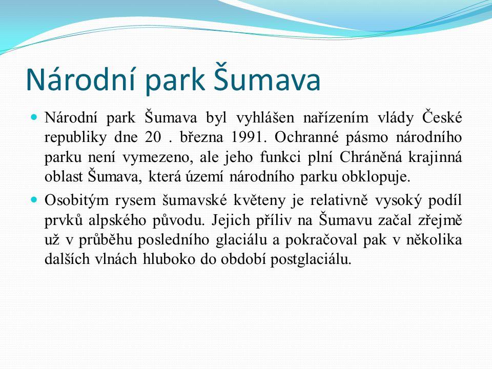 Národní park Šumava Národní park Šumava byl vyhlášen nařízením vlády České republiky dne 20. března 1991. Ochranné pásmo národního parku není vymezeno