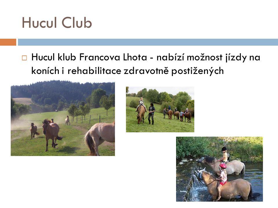 Hucul Club  Hucul klub Francova Lhota - nabízí možnost jízdy na koních i rehabilitace zdravotně postižených
