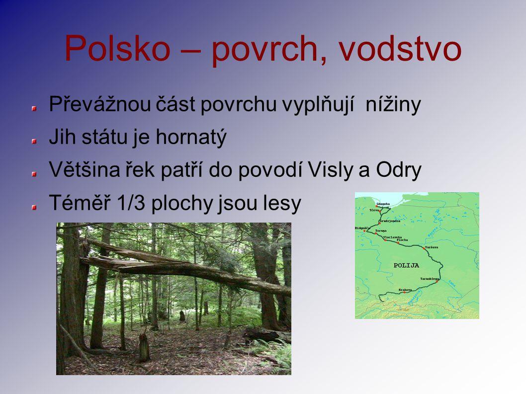 Polsko – povrch, vodstvo Převážnou část povrchu vyplňují nížiny Jih státu je hornatý Většina řek patří do povodí Visly a Odry Téměř 1/3 plochy jsou le