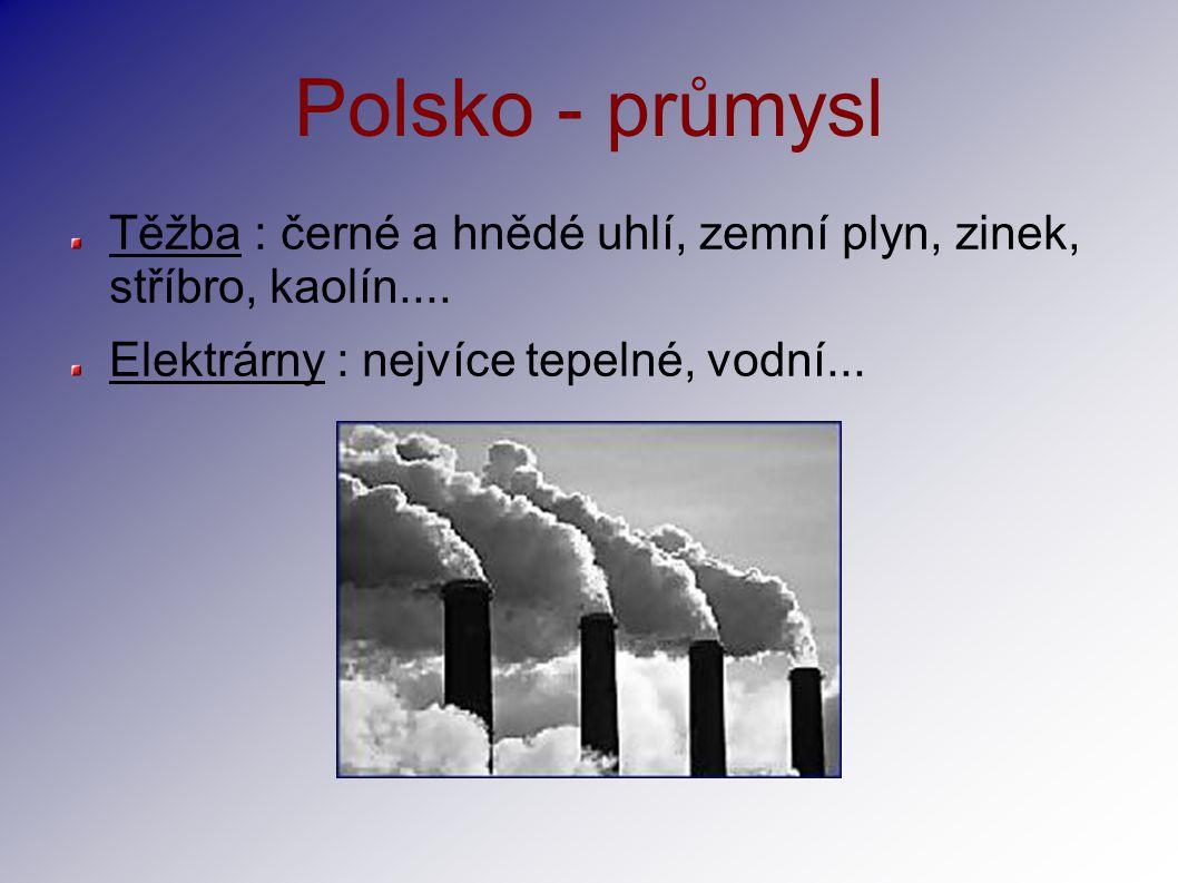 Polsko - průmysl Těžba : černé a hnědé uhlí, zemní plyn, zinek, stříbro, kaolín.... Elektrárny : nejvíce tepelné, vodní...