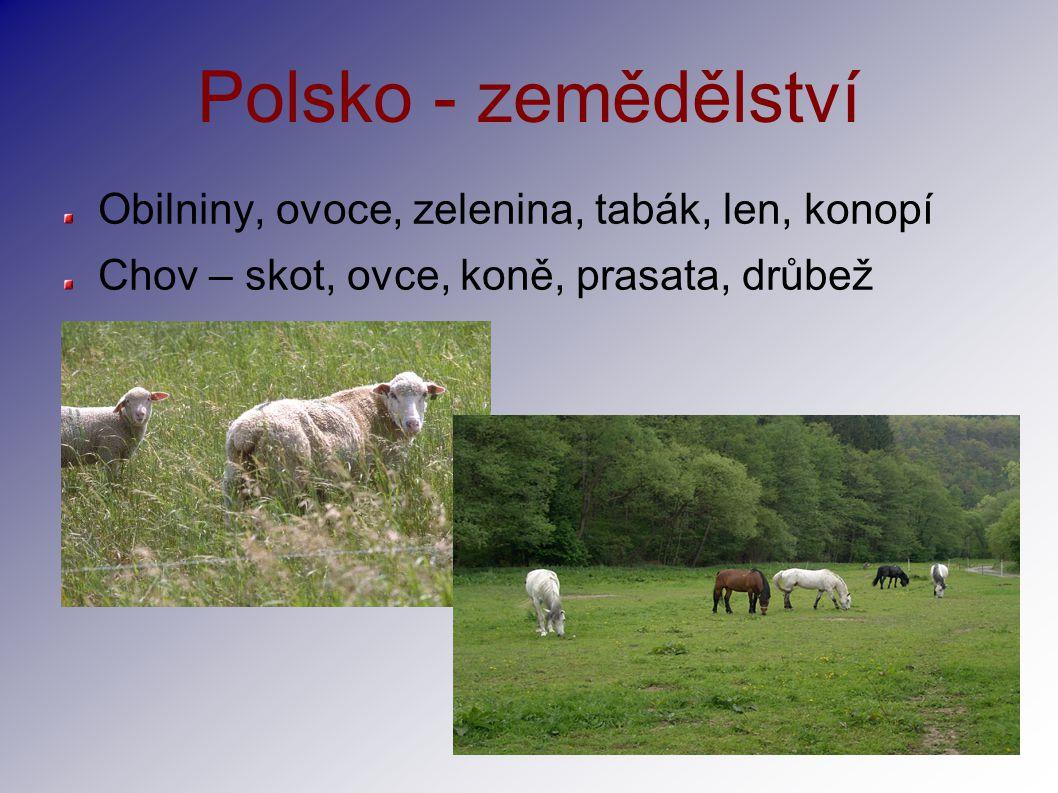 Polsko - zemědělství Obilniny, ovoce, zelenina, tabák, len, konopí Chov – skot, ovce, koně, prasata, drůbež