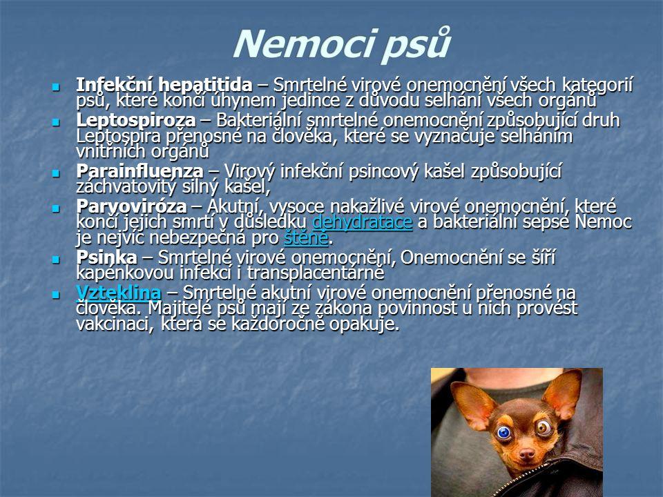 Infekční hepatitida – Smrtelné virové onemocnění všech kategorií psů, které končí úhynem jedince z důvodu selhání všech orgánů Infekční hepatitida – Smrtelné virové onemocnění všech kategorií psů, které končí úhynem jedince z důvodu selhání všech orgánů Leptospiroza – Bakteriální smrtelné onemocnění způsobující druh Leptospira přenosné na člověka, které se vyznačuje selháním vnitřních orgánů Leptospiroza – Bakteriální smrtelné onemocnění způsobující druh Leptospira přenosné na člověka, které se vyznačuje selháním vnitřních orgánů Parainfluenza – Virový infekční psincový kašel způsobující záchvatovitý silný kašel, Parainfluenza – Virový infekční psincový kašel způsobující záchvatovitý silný kašel, Parvoviróza – Akutní, vysoce nakažlivé virové onemocnění, které končí jejich smrtí v důsledku dehydratace a bakteriální sepse Nemoc je nejvíc nebezpečná pro štěně.