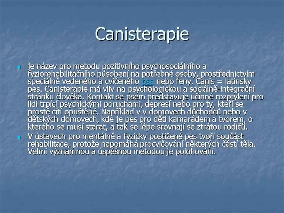 Canisterapie je název pro metodu pozitivního psychosociálního a fyziorehabilitačního působení na potřebné osoby, prostřednictvím speciálně vedeného a cvičeného psa nebo feny.