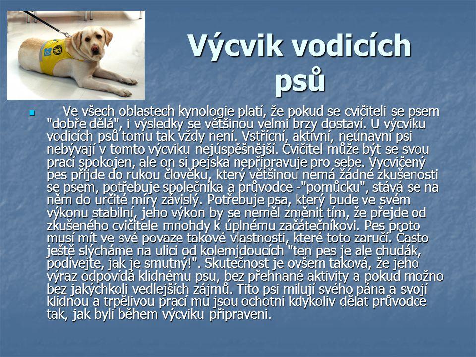 Výcvik vodicích psů Ve všech oblastech kynologie platí, že pokud se cvičiteli se psem
