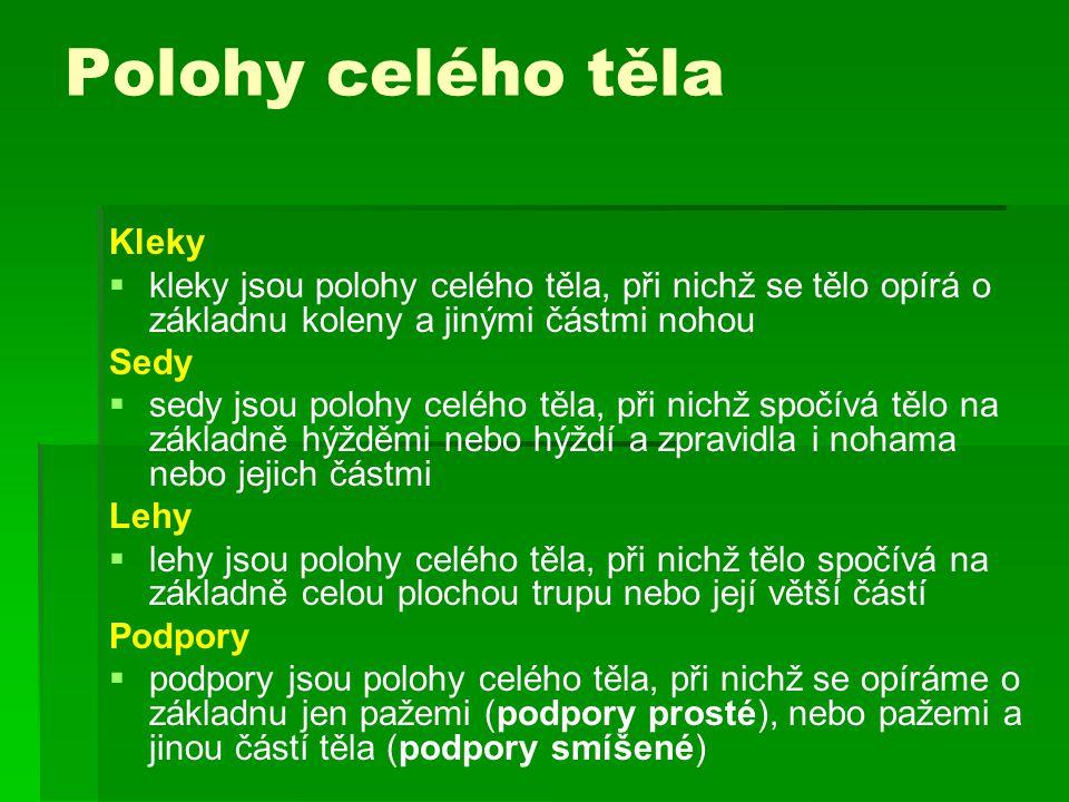 Zdroje citací: TTTText: AAPPELT, K., HORÁKOVÁ, D., NOVOTNÝ, L.: Názvosloví pro cvičitele.