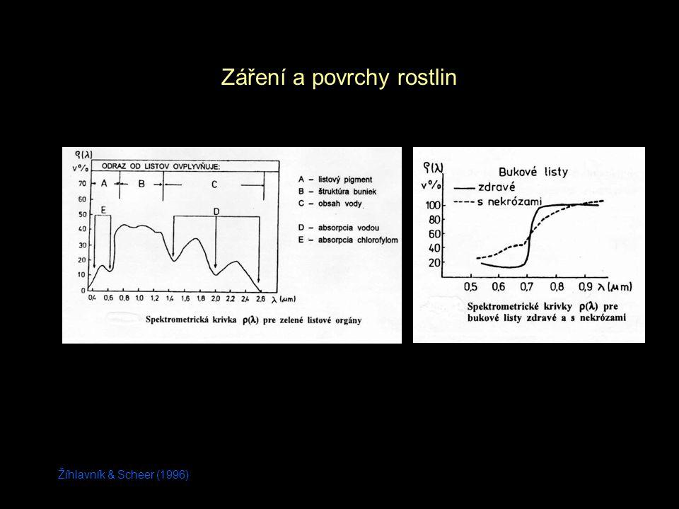 Žíhlavník & Scheer (1996) Záření a povrchy rostlin