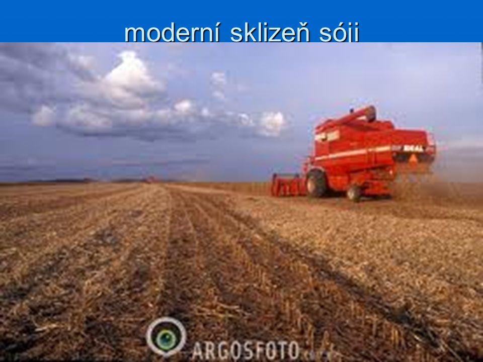moderní sklizeň sóji