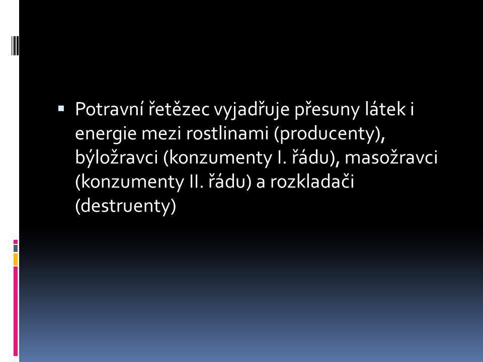  Potravní řetězec vyjadřuje přesuny látek i energie mezi rostlinami (producenty), býložravci (konzumenty I. řádu), masožravci (konzumenty II. řádu) a
